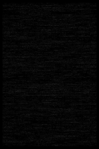 Siela Special Day Teppich   Polypropylen Heatset   Schwarz